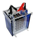 elektrophorese-mini-tankblot