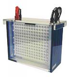 electrophorese-maxi-blot