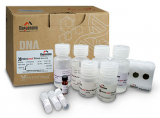 xpress-dna-extraktion-blut-mini-kit